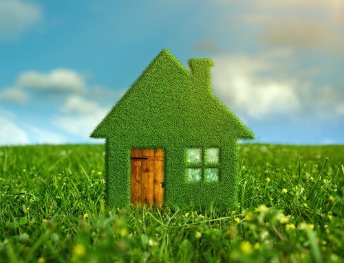 Four Easy Ways to Reduce Home Energy Usage in Lansing, Michigan